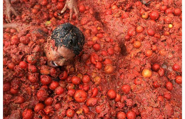 Pomodorola philisophie de la tomate